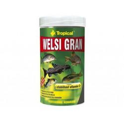 WELSI GRAN