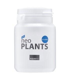 NEO PLANTS ST.LONG